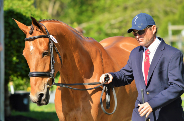 Phillip Dutton and Fernhill Fugitive. Photo by Sally Spickard.