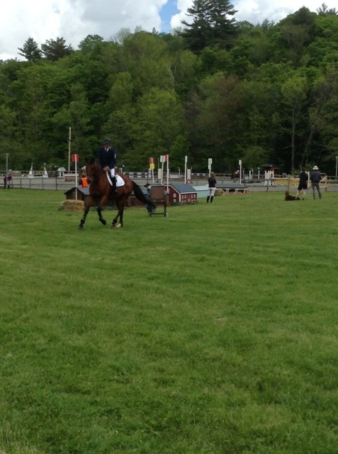 John Bourgoin and Fernhill Ballinaboola looking flawless in show jumping warmup.