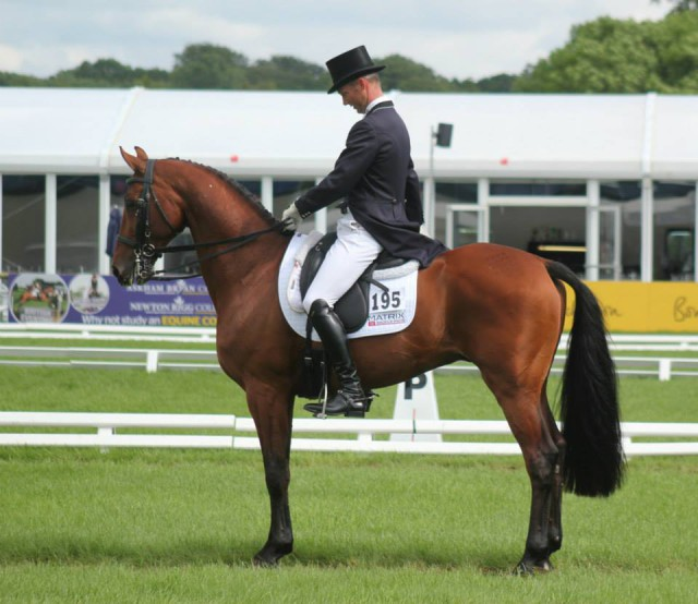 Clark Montgomery and Universe at Bramham. Photo by Samantha Clark for PRO.