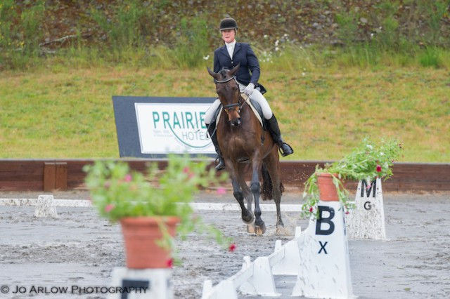 Karen O'Neal and Freudentag are leading Open Prelim after dressage. Photo by Jo Arlow Photography.