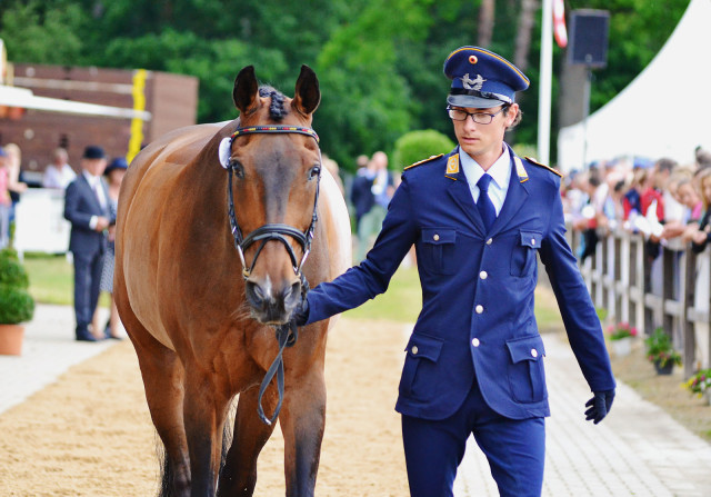 Benjamin Winter and Wild Thing Z at the first horse inspection. Photo by Jenni Autry.