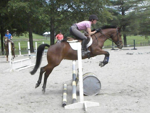 Jumping my Conn x pony this summer