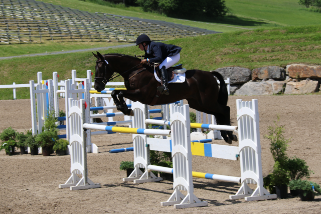 Hamilton BioVet Sponsored Rider Lizzie Snow uses the UltrOZ system on her competition horses, Photo by: Leslie Wylie