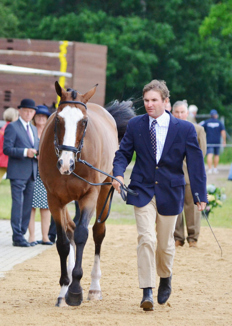 Phillip Dutton jogs Otis Barbotiere for an injured Boyd Martin. Photo by Jenni Autry.