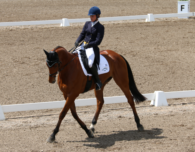 Ashley Adams and Da Vinci Code lead after dressage in the Bromont CCI2*. Photo by Leslie Wylie.