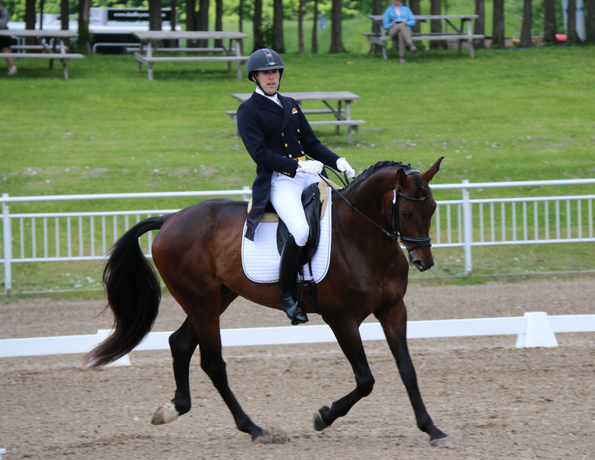 Andrew Palmer and Tatendrang, tied for 5th after dressage. Photo by Leslie Wylie.