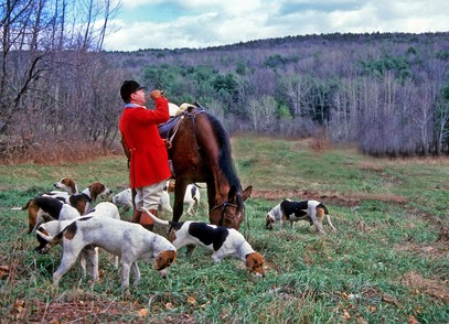 BE foxhunt hounds 1 DP
