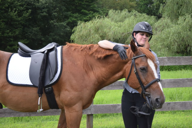 Adding the Quilted Dressage Pad with the Crystal Border lends a little extra dazzle - Photo by Lorraine Peachey
