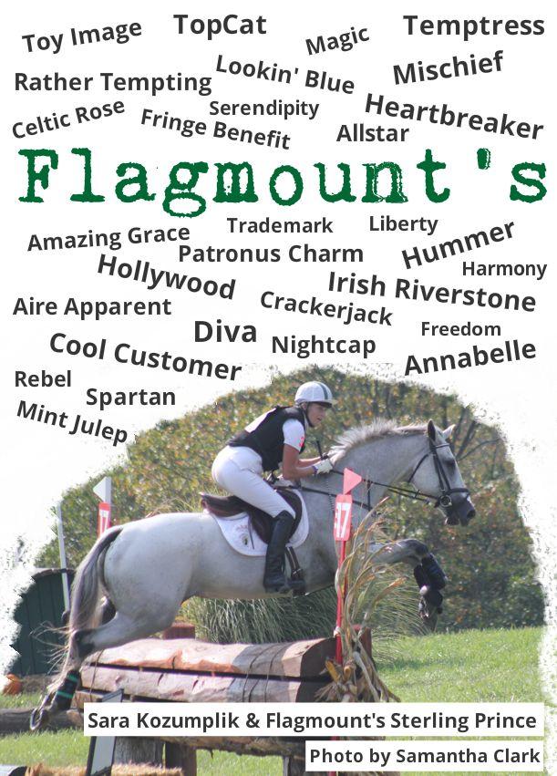 Flagmounts.jpg