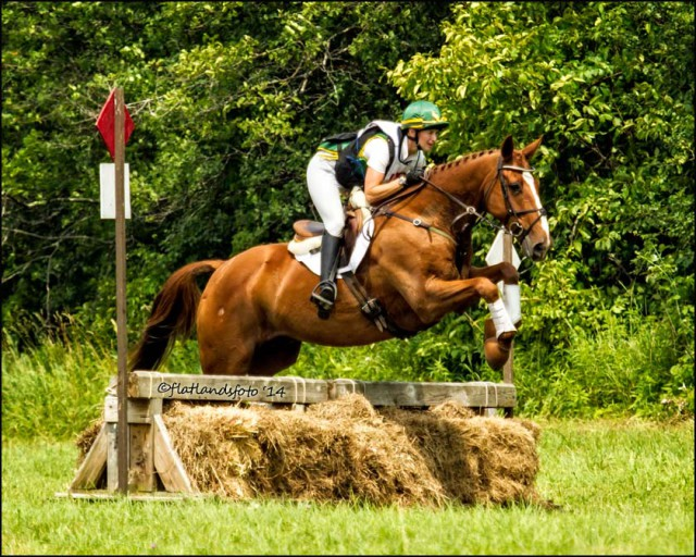 Me and Theatre Royal (owned by Gayle Davis) on xc! used with permission flatlandsfoto