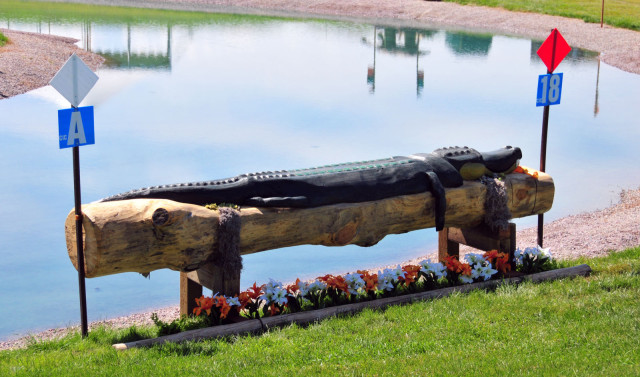 New Alligator fence featuring intricate carvings at the Bayou Treche water complex.