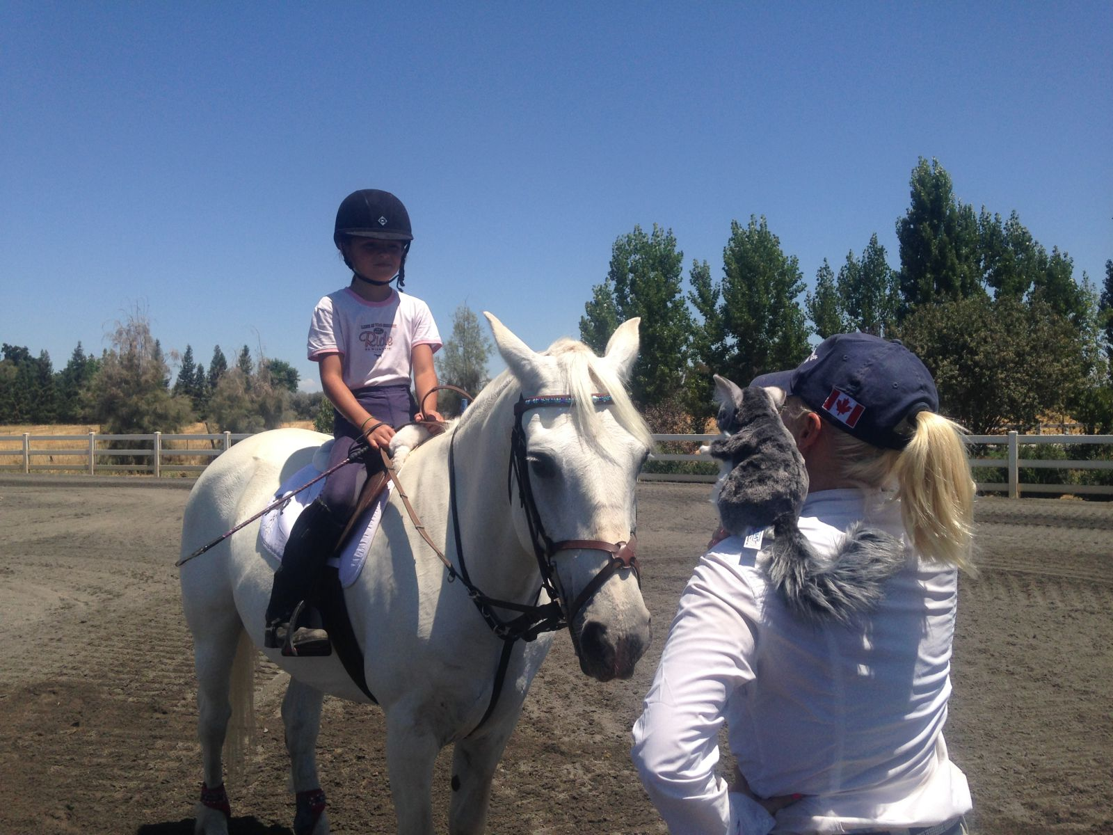 The Chinch, Hawley and Taylor at Dragonfire Farm. Photo by Erin Critz