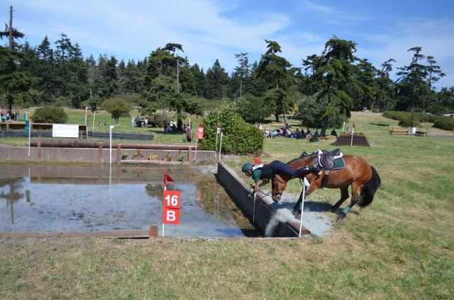 Cynthia Bayles into the water at Whidbey Island Horse Trials. Photo by Susie Rowand Thompson.