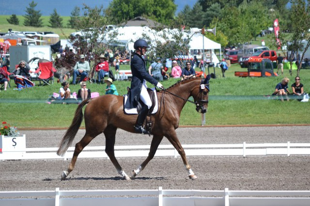 Matthew Brown and Super Socks BCF, 2nd after CIC3* dressage. Photo by Chesna Klimek.