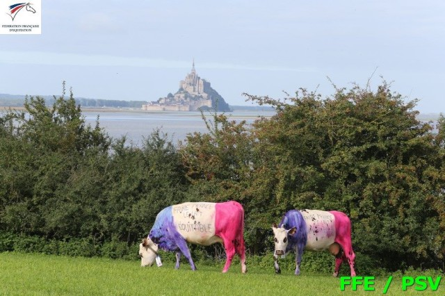 France: where even the cows are patriotic. Photo courtesy of FFE Equipes de France FB.