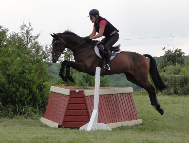Anita Nemtin and Acrobat on cross country day of the Phillip Dutton clinic. Photo via Anita Nemtim.