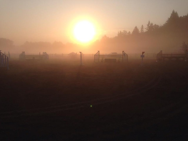 Show jumping morning. Photo by Devin Robel.
