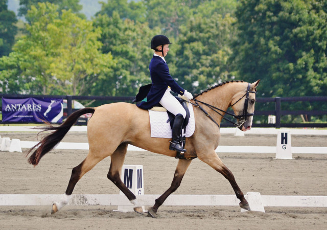 Callie Evans and Glendening Avis at Millbrook Advanced. Photo by Jenni Autry.