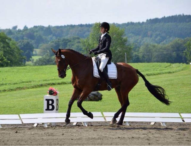 Slick putting in a lovely dressage test in a BIG environment.