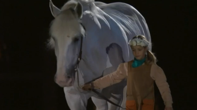 This adorable little girl and huge Percheron are waking around a map on the floor of the stadium.