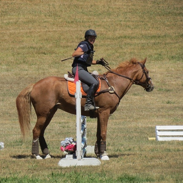 Nicole Gibby and Blaze left all the poles up, but now what?! Photo by Lorna Smith Moth.