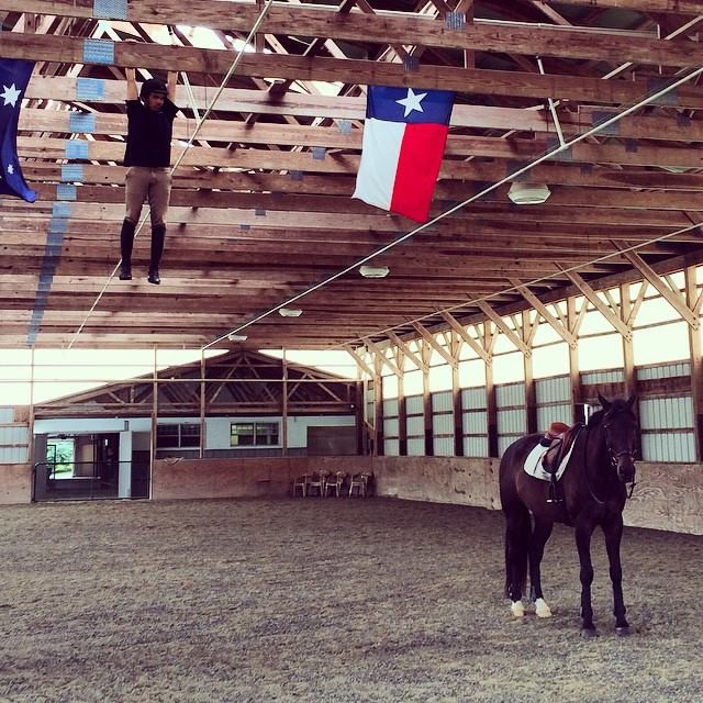 Photo courtesy of Schramm Equestrian