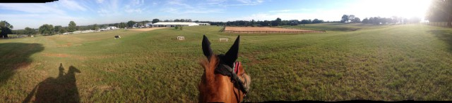 Early morning view of the Texas Rose Horse Park. Photo courtesy of Caroline Martin's Facebook page.