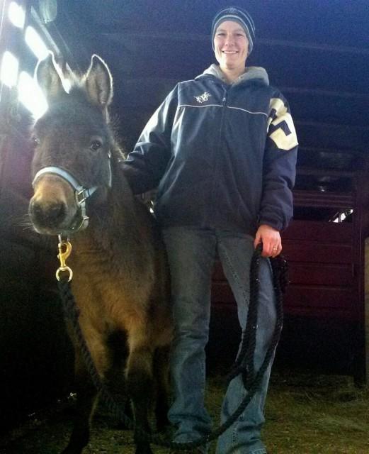 Archie, the mini-mule.