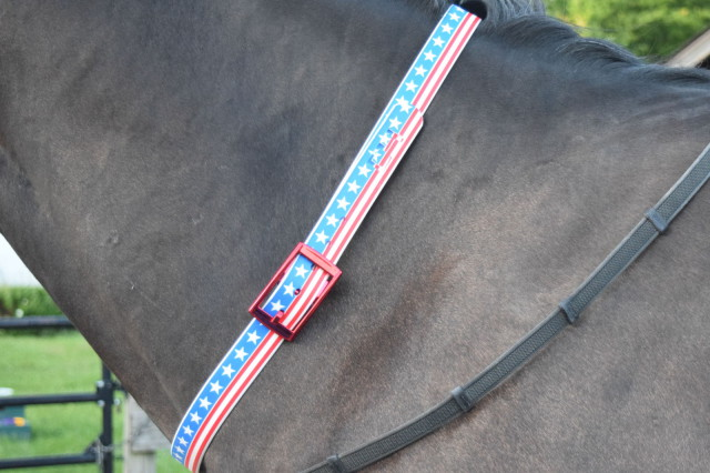 I found myself absolutely going crazy for the Americana Classic belt. Which I wanted. So I bought it. And, it looks simply terrific as a neckstrap - Photo by Lorraine Peachey