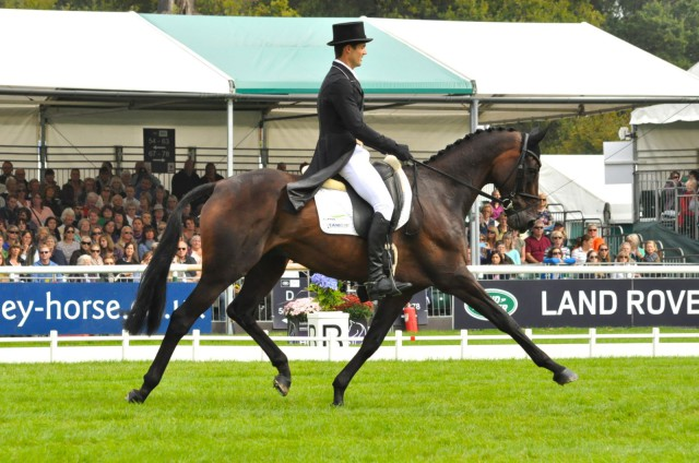 Jock Paget & Clifton Promise had a great test for a 38.8. Photo by Kate Samuels.
