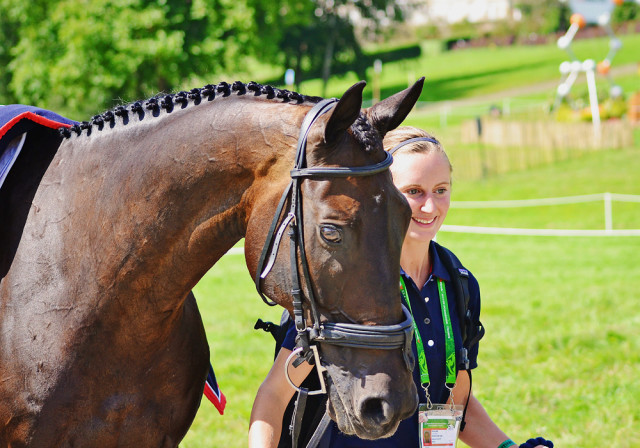 Lindsey Taylor and Shamwari 4 at WEG. Photo by Jenni Autry.