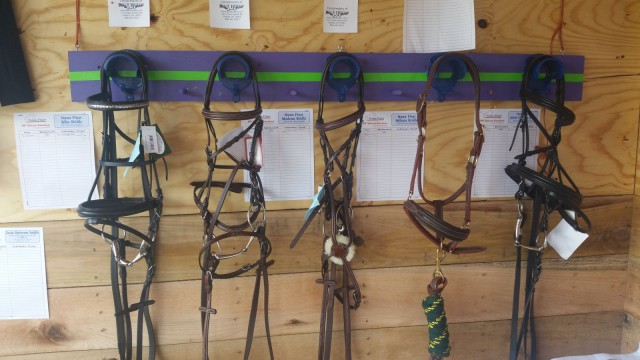 So many Nunn Finer bridles to choose from...