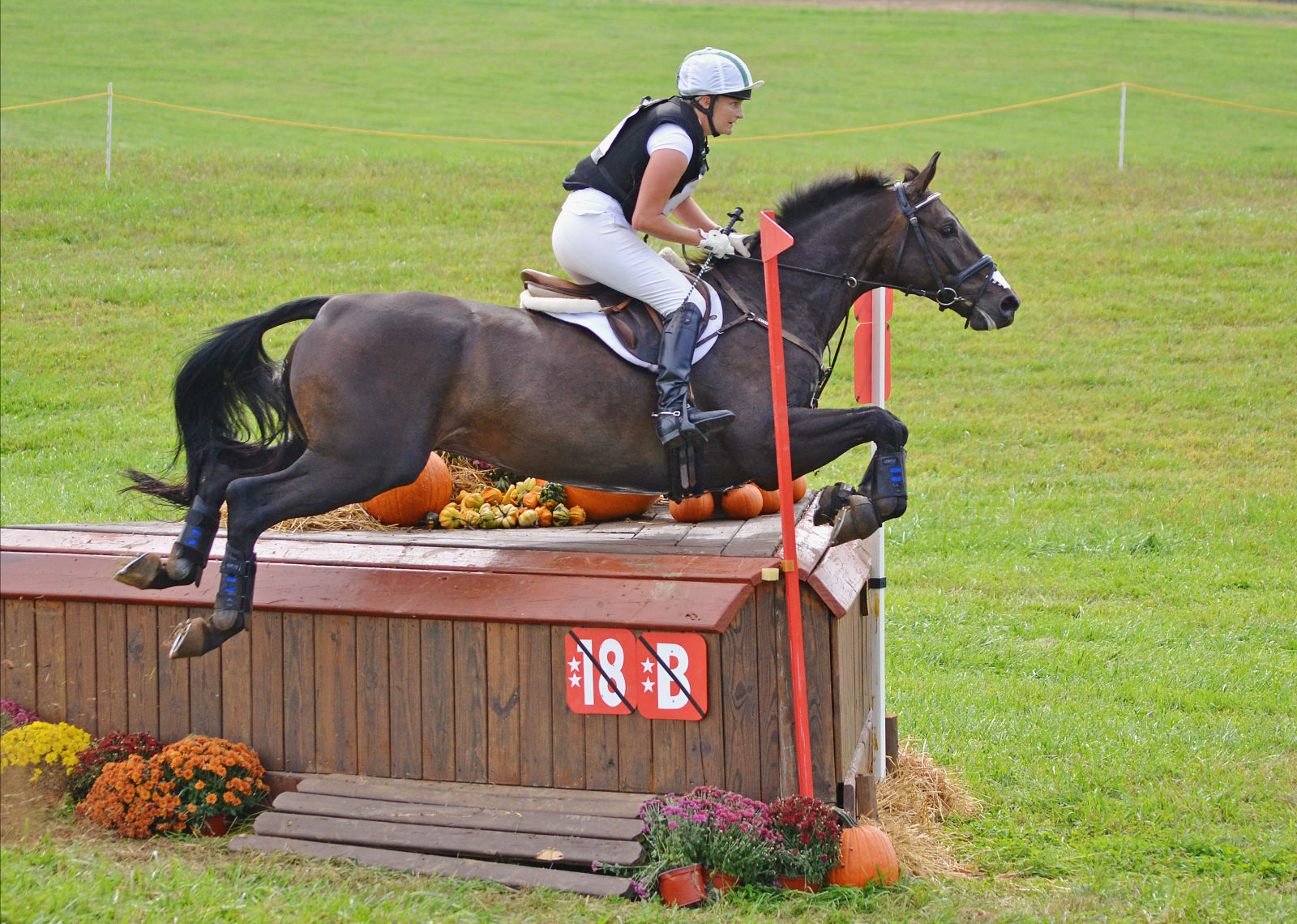 Who Jumped It Best? Plantation Field CIC2* Edition ...