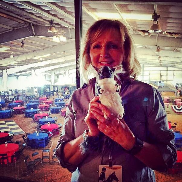 Chinch has a new crush! USEA CEO Jo Whitehouse #swoon #loveatfirstsight #useaaec