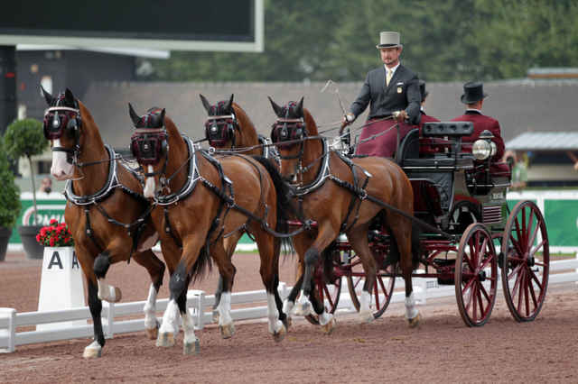 Chester Weber drives to dressage victory. Photo courtesy of Marie de Ronde-Oudemans/FEI.