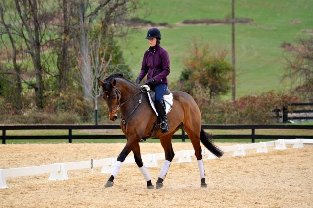 Victoria & Dez participating in the William Fox-Pitt clinic last fall. Photo by Kate Samuels.