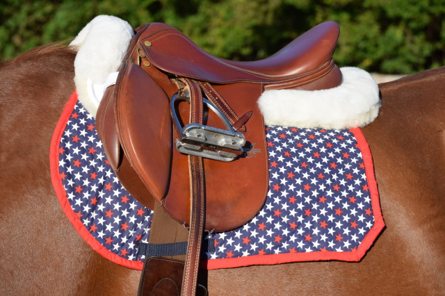 The Mattes Gold Collection Half Pad with Rear Trim looks fabulous under both of my saddles - Photo by: Lorraine Peachey