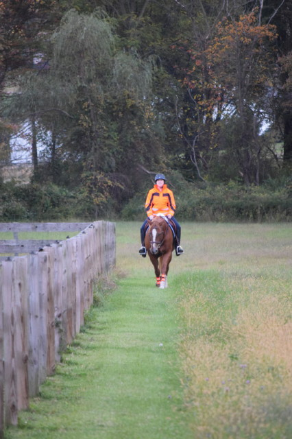 I'm told that I'm very easy to SEE, even when hacking out in the back of the farm from up at the barn when I'm rocking the Aspey in all of it's bright orange glory - Photo by: Lorraine Peachey