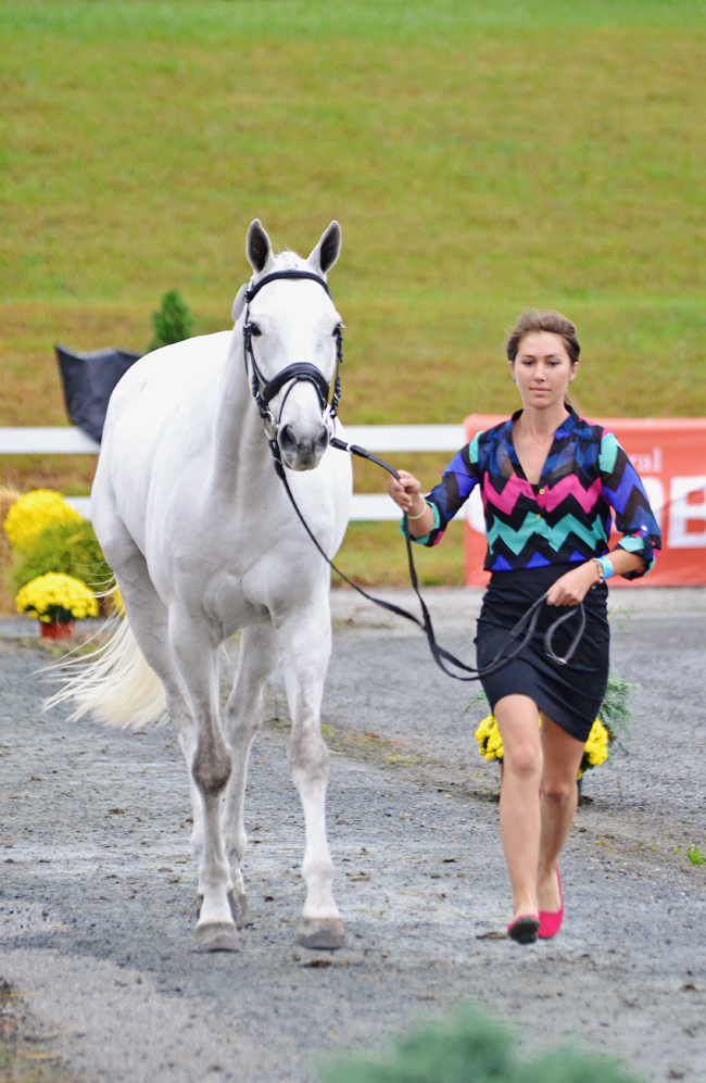Sarah Dunkerton and Old Man Moel (Winston) at Fair Hill. Photo by Jenni Autry