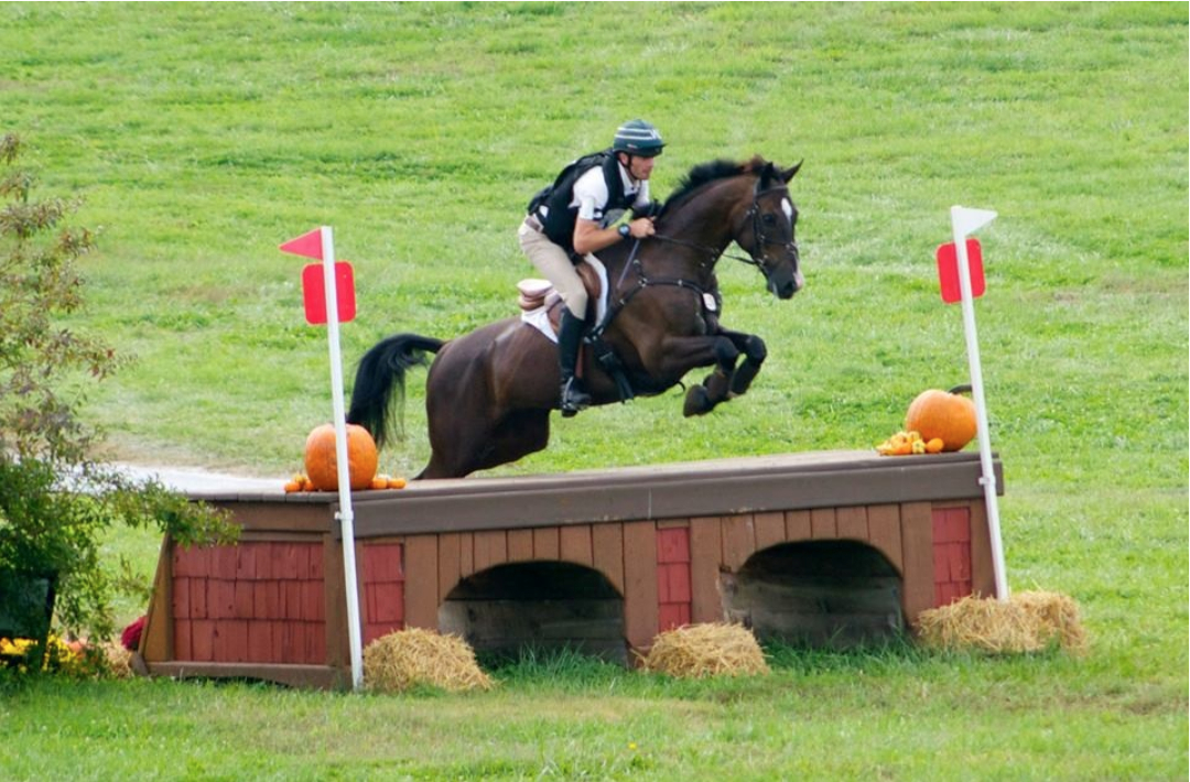An Owner S Perspective On Cross Country Course Design Eventing Nation Three Day Eventing News Results Videos And Commentary