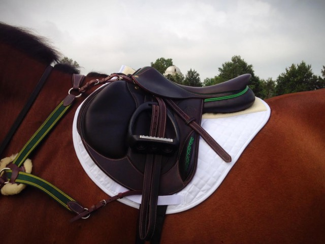 Look how perfectly this pad fits my forward flap cross country saddle! Photo by Kate Samuels.