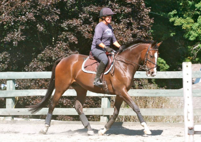 CANTER PA alum Bounissimo with his owner Amie Loring. Photo courtesy of CANTER PA.