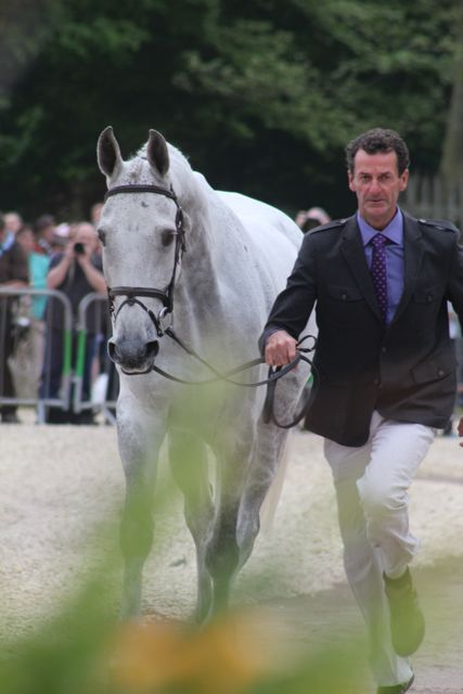 Mark Todd and NZB Land Vision at Badminton in 2011. Photo by Samantha Clark.