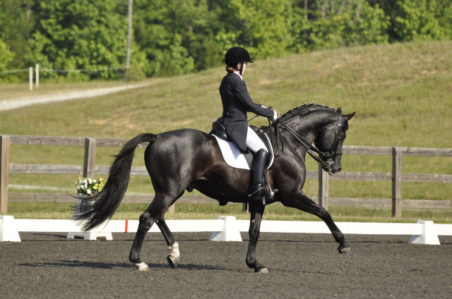Keep the helmet, but should dressage get rid of tails? Photo by Leslie Threlkeld.