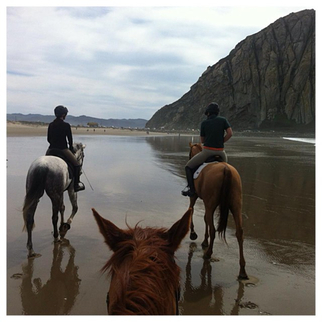 Got to check a major thing off my bucket list - riding on the beach!  Morro Bay - California March 2014.  Photo by Jessica Kerschbaumer