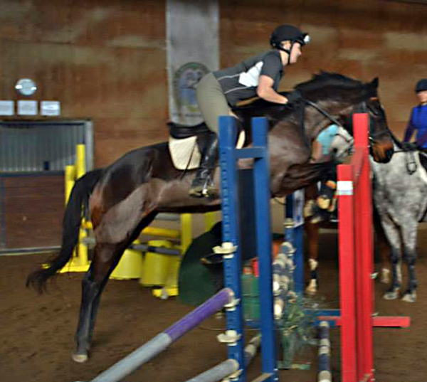 Twiggy showing her stuff this past weekend over a small course!  Photo by Tayler Vick