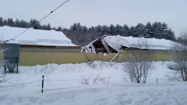 The indoor arena collapsed at Flying High Stables in Massachusetts. No horses or people were injured. Photo via Flying High Stables Facebook