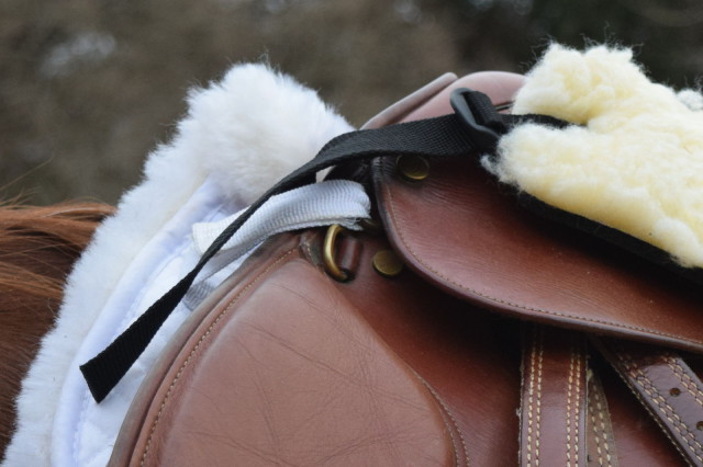 The Six Point Saddle Pad also attaches to the D-rings on my saddle, rather than the billet straps, as traditional pads do - and it is guaranteed to stay in place - Photo by Lorraine Peachey