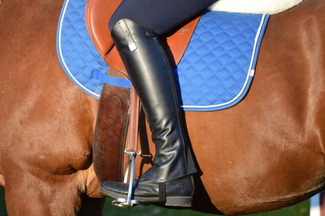 In the saddle, I find that the Half Chaps are thin enough to allow me the feeling of a nice amount of contact and control with my legs, without having too much bulk between them and the saddle - Photo by Lorraine Peachey