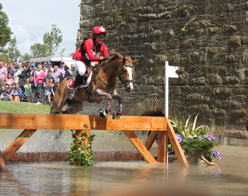 A Swiss pony competitor through the Mill Water Complex. Photo by Marianne Van Pelt.